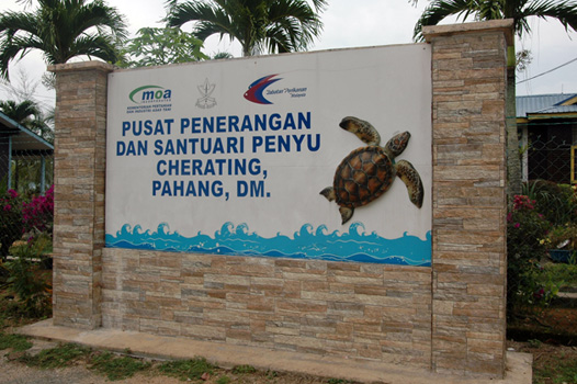 Turtle Santuary Cherating